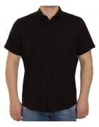 51311V-2 черн.(кор. рукав) Рубашка мужская 2XL-5XL по 4
