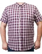 7963-13 Рубашка муж.(кор.рукав) 3XL-6XL по 4