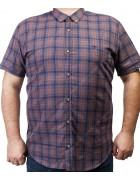 7963-14 Рубашка муж.(кор.рукав) 3XL-6XL по 4