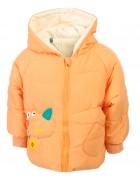 218011 оранж Куртка детская динозаврик 90-130 по 5