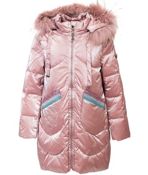 873 пудра Куртка девочка 116-140 по 5