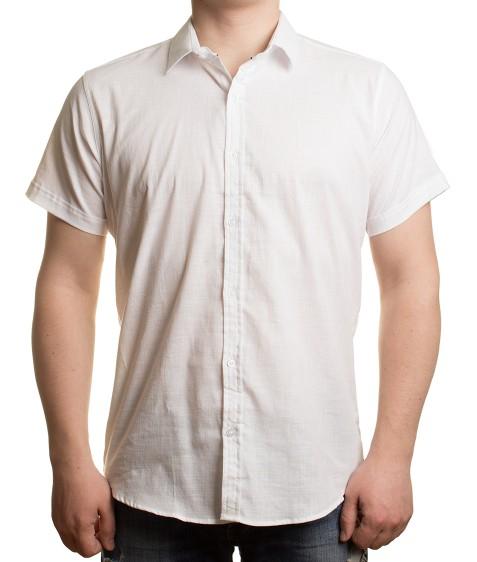 51311V-1 бел.(кор. рукав) Рубашка мужская 2XL-5XL по 4
